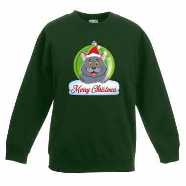 Kerstkersttrui merry christmas grijze kat / poes kerstbal groen kinde